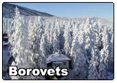 Sejur Borovets